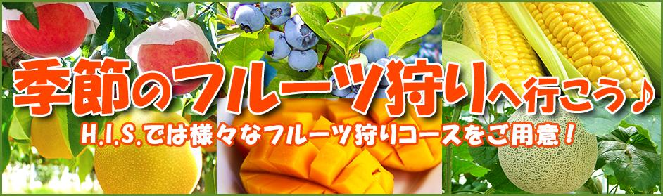 季節のフルーツ狩り