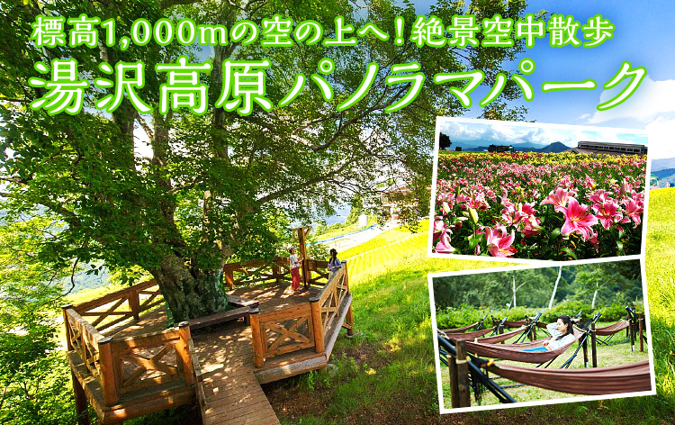 湯沢高原パノラマパーク(イメージ)