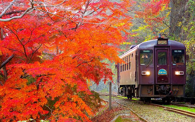 わたらせ渓谷鐵道(イメージ)