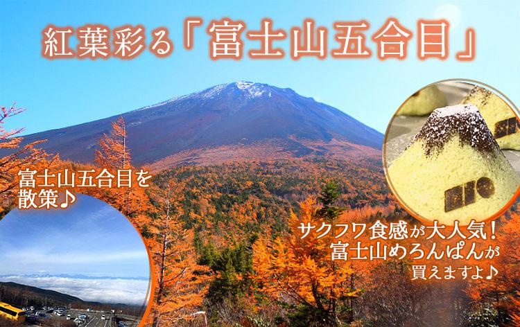 富士山五合目(イメージ)