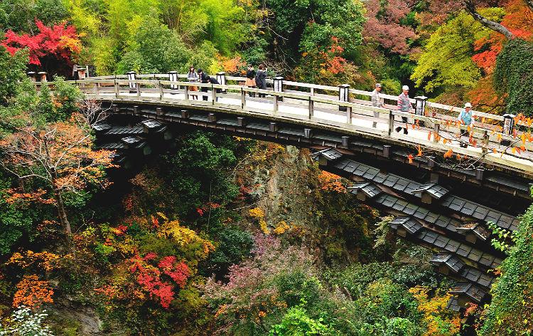 甲斐の猿橋(イメージ)