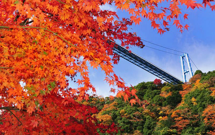 竜神大吊橋(イメージ)