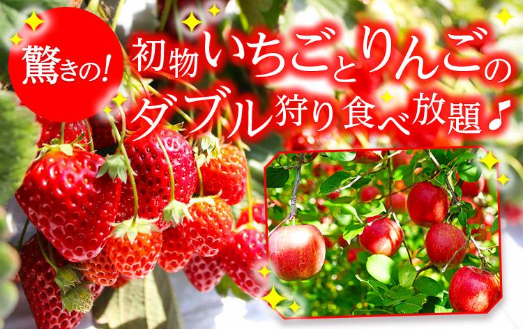 初物いちご&りんご狩り食べ放題(イメージ)