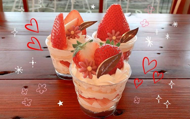 いちごショートケーキ作り体験(イメージ)