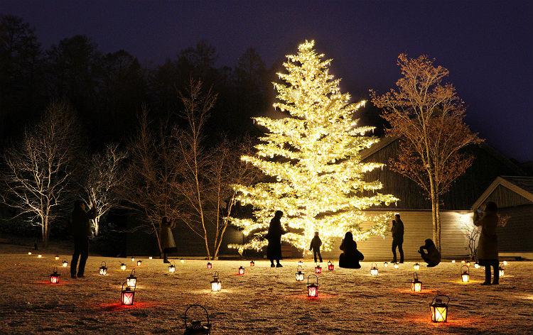 軽井沢星野エリアのクリスマス2021(イメージ)