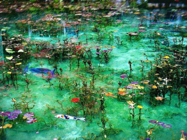 モネの池(イメージ)