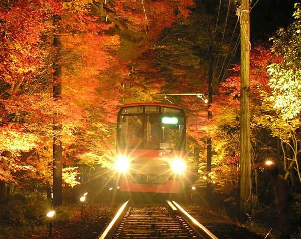 貴船神社ライトアップ(イメージ)