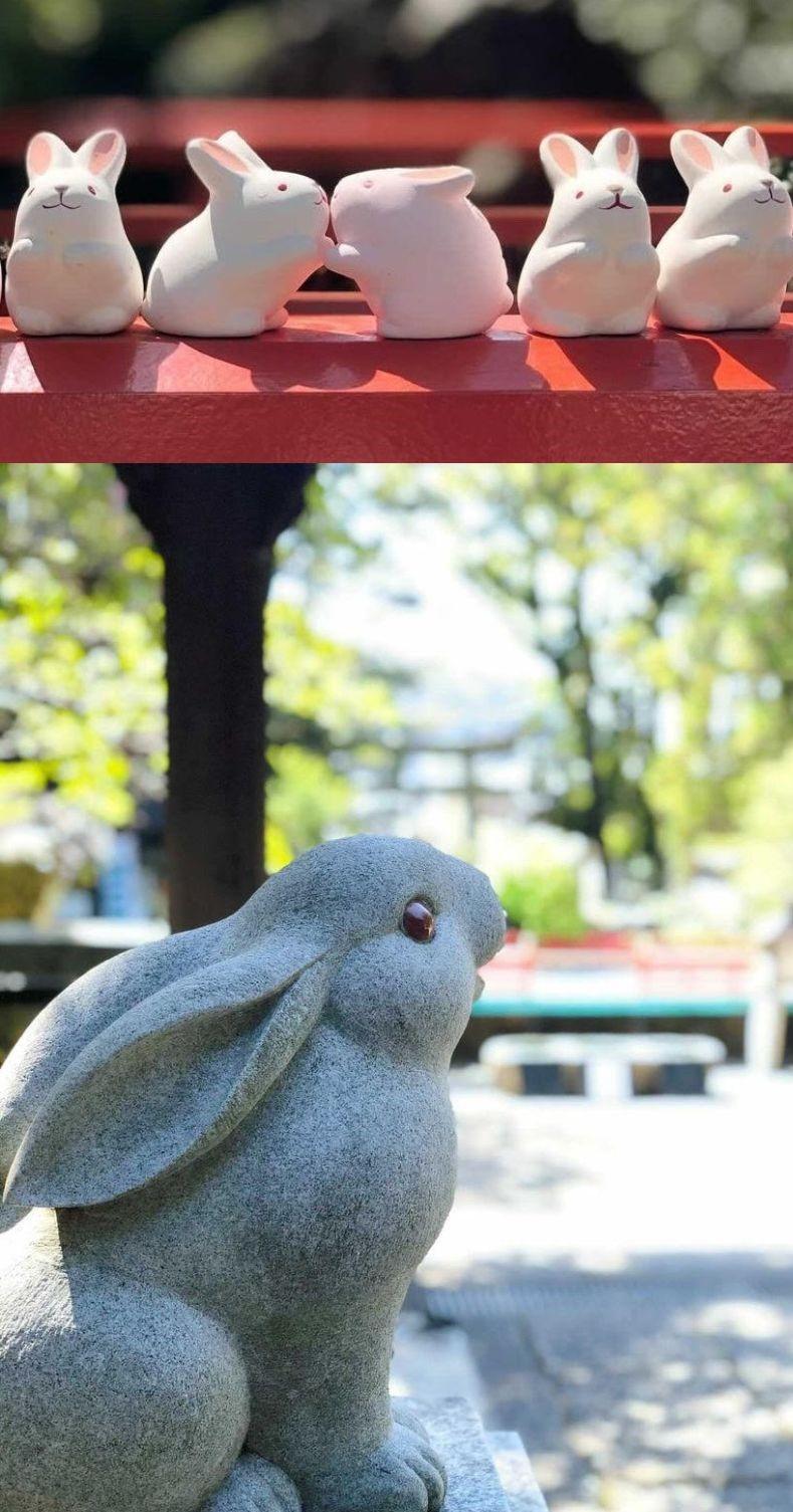 岡崎神社イメージ favorite_charu様撮影