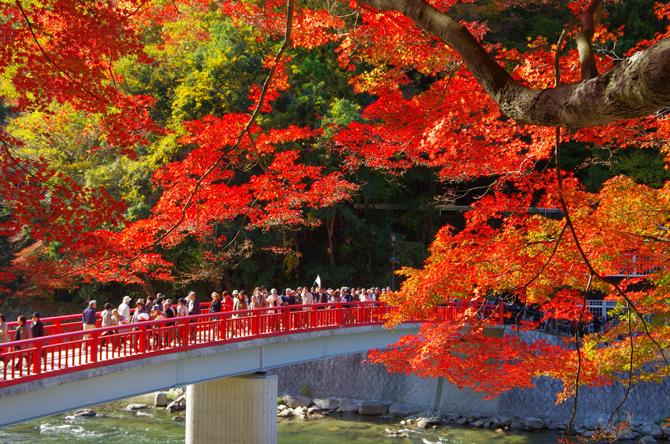 香嵐渓の大紅葉(イメージ)