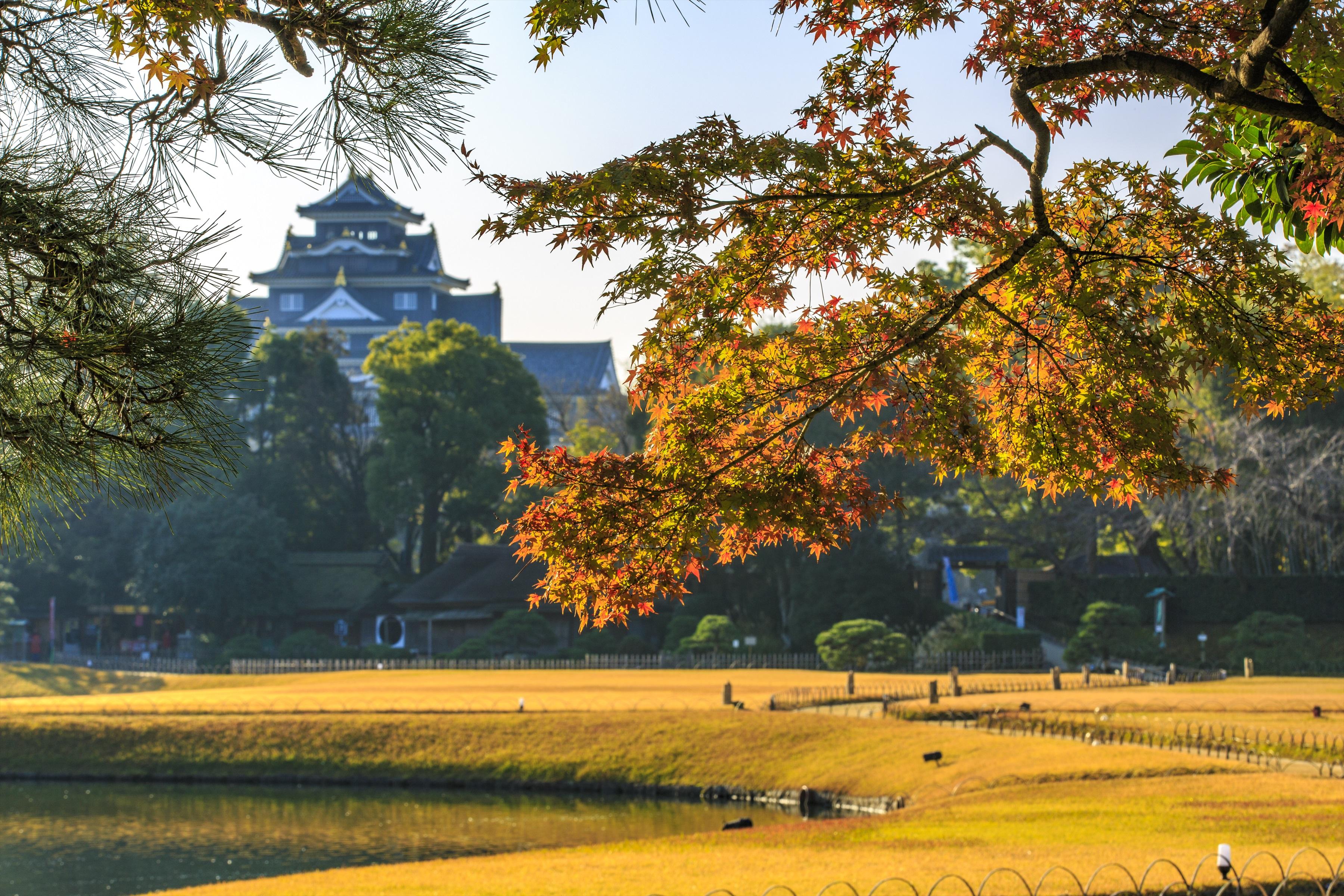 岡山後楽園(イメージ)写真提供:岡山県観光連盟