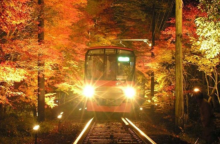 叡山電鉄ライトアップ(イメージ)