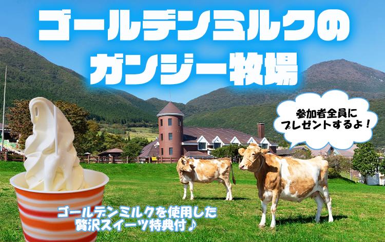 ガンジー牧場 (イメージ)